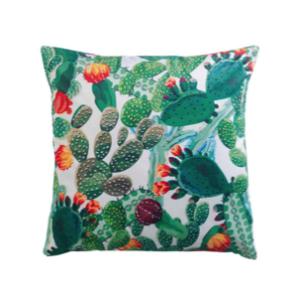 coussin cactus